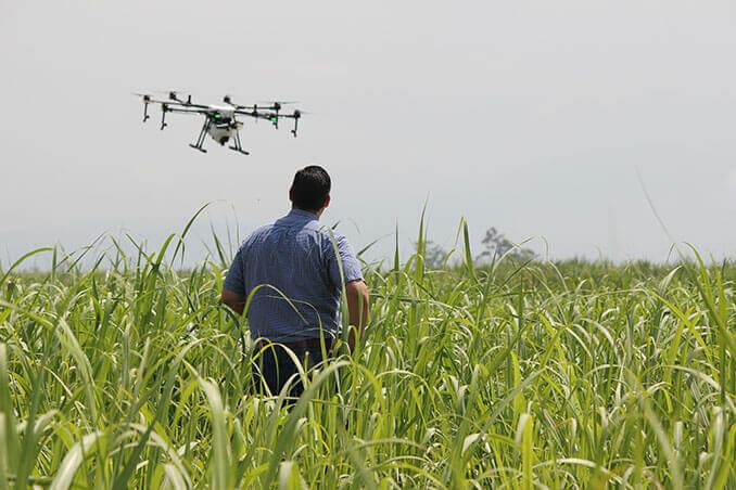 Piloto de drones en un cultivo - The Drones Land